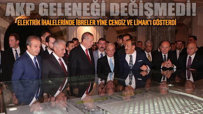 AKP'de gelenek değişmedi: Elektrik ihalelerinde ibreler yine Cengiz ve Limak'ı gösterdi