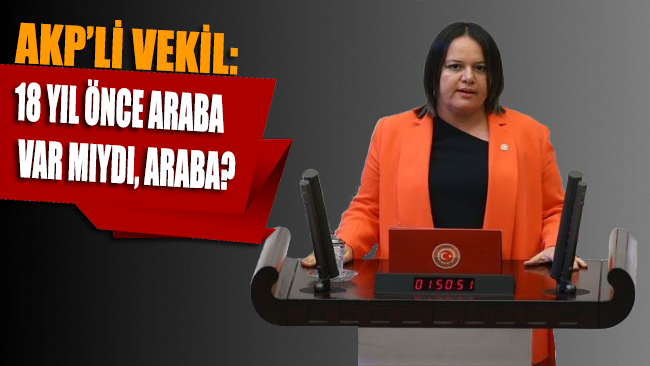AKP'li vekilden ilginç çıkış: