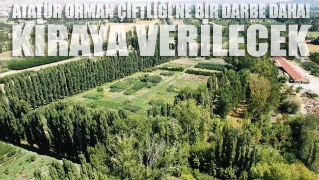 Atatürk Orman Çiftiği'nin 70 dönümü kiraya çıkarıldı