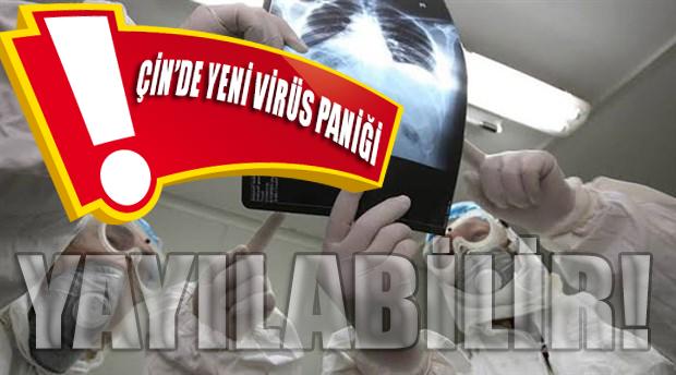 Çin'de yeni virüs tespit edildi: Dünyaya yayılabilir!