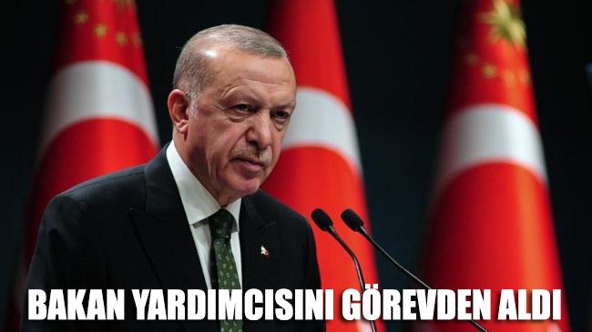 Erdoğan bakan yardımcısını görevden aldı