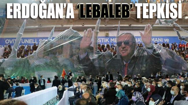 Erdoğan'a 'lebaleb' tepkisi