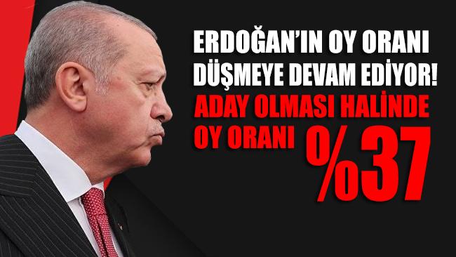 Erdoğan'ın aday olması halinde alacağı oy yüzde 37'de kalıyor