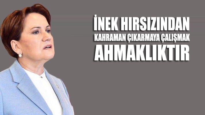 Meral Akşener: İnek hırsızından kahraman çıkarmaya çalışmak ahmaklıktır