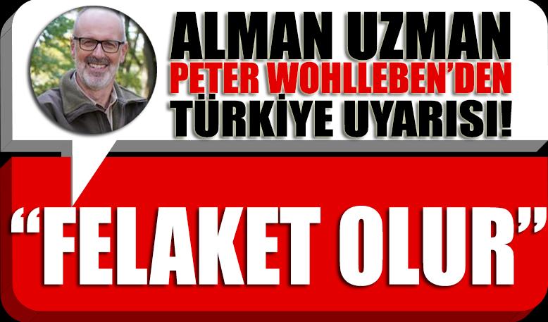 Kitapları milyonlar satan Alman uzmandan 'Türkiye' uyarısı: Felaket olur