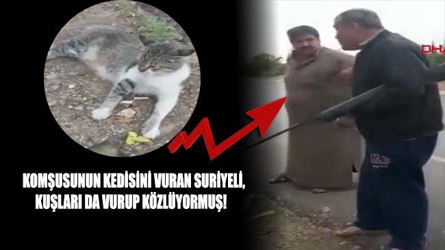 Komşusunun kedisini vuran Suriyeli kuşları da vurup közlüyormuş!
