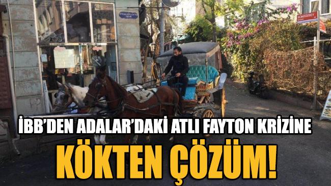 Kriz çıkaran fayton ve atları İstanbul Büyükşehir Belediyesi satın alıyor
