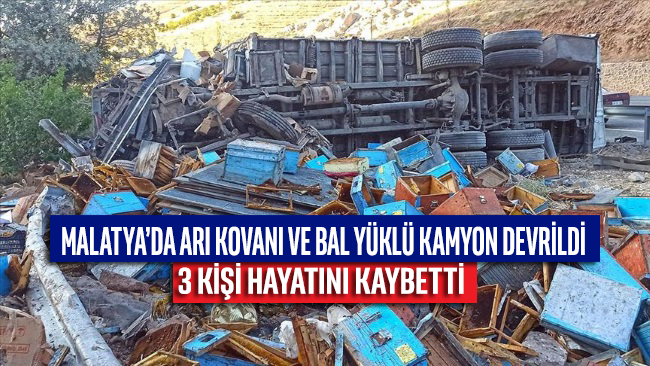 Malatya'da arı kovanı ve bal yüklü kamyon devrildi: 3 ölü
