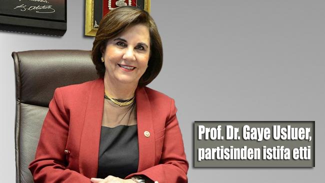 Prof. Dr. Gaye Usluer, CHP'den istifa etti