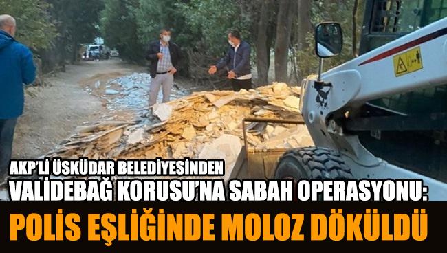 Validebağ Korusu'na sabah operasyonu: Polis eşliğinde moloz döküldü