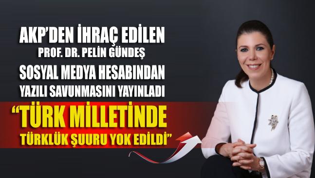 Prof. Dr. Pelin Gündeş sosyal medya hesabından yazılı savunmasını yayınladı