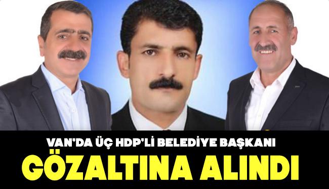 Van'da 3 HDP'li belediye başkanı gözaltına alındı