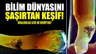 Bilim dünyasını şaşırtan keşif! Gözlerinize inanamayacaksınız