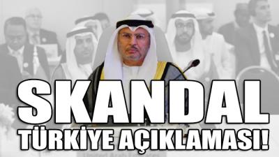 Birleşik Arap Emirlikleri'nden skandal Türkiye açıklaması: Türkiye, Arapların ilişkilerine karışmayı bırakmalı
