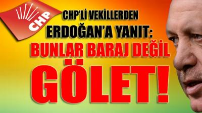CHP'li vekillerden Erdoğan'a: Bunlar baraj değil gölet!