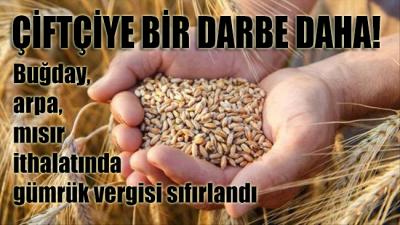 Çiftçiye kötü haber!.. Buğday, arpa, mısır ithalatında gümrük vergisi sıfırlandı