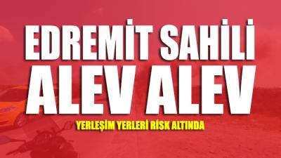 Edremit sahili alev alev: Yangın yerleşim yerlerini tehdit ediyor
