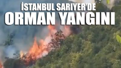 İstanbul Sarıyer'de ormanlık alanda yangın