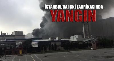 İstanbul'da bir içki fabrikasında yangın