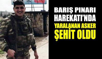 MSB: Barış Pınarı Harekatı'nda yaralanan asker şehit oldu