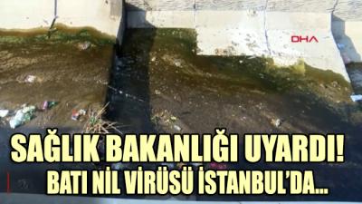 Sağlık Bakanlığı'ndan uyarı! Virüs İstanbul'a ulaştı