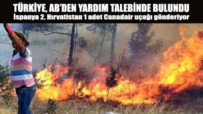 Türkiye, yangınlar için AB'den destek talebinde bulundu